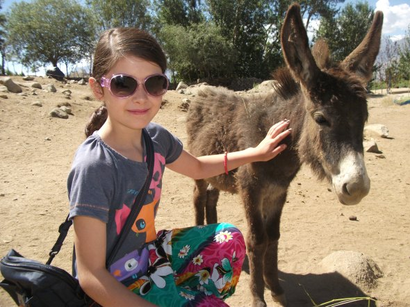 Of course Louise loved the place, I just felt a tad uneasy at the willingness of westerners to give to donkeys rather than people.