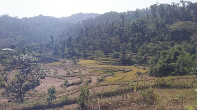 The empty fields show the terraces that are used to farm the hills.