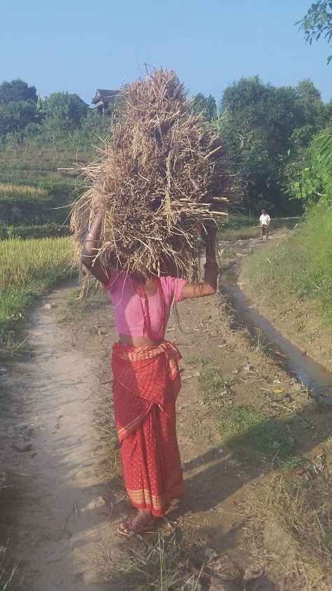 Not much outreach work can be carried out when the harvest is such a busy time for every one in the village.