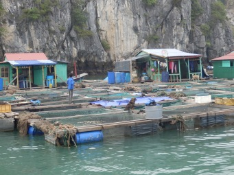 Part of the industry of the floating village