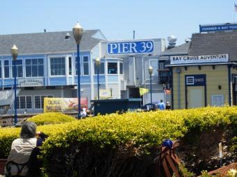 (In)famous pier 39